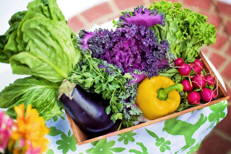 Naturopathy - Holistic Nutrition - Wellness Path