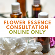 Flower Essence Consultation Online Only