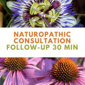 Naturopathic Consultation Follow-Up 30min | Wellness Path