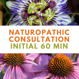 Naturopathic Initial Consultation 60min | Wellness Path