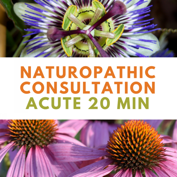 Naturopathic Consultation Acute 20min | Wellness Path