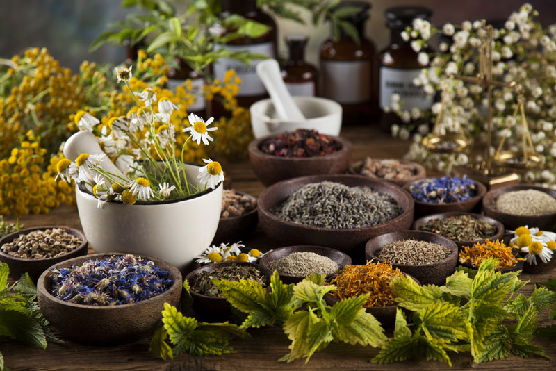 Which Type of Naturopathic Consult Is Right For Me? Wellness Path